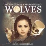 Selena Gomez & Marshmello – Wolves (Owen Norton remix)OwenNorton WolvesRemi