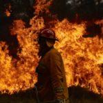 Electronic music bands together, DJs pledge support amidst Australian bushfire destructionAustralian Bushfires 2020